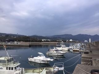 20200313亀川漁港1.jpg